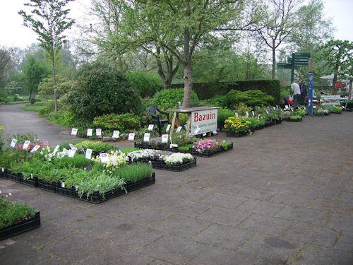 Overzicht plantjesmarkt Hortus